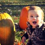 Weekend O' Pumpkin Fun!