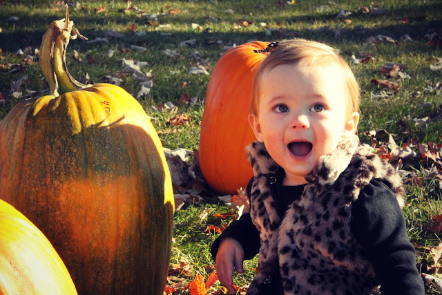 Weekend O' Pumpkin Fun!
