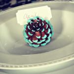 DIY Week:  Painted Pine Cones