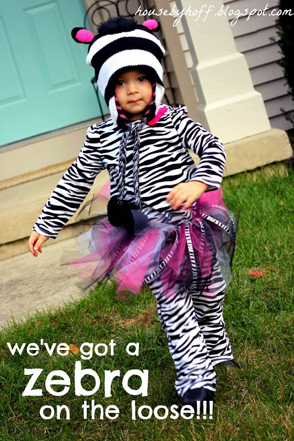 Little girl in a zebra costume.
