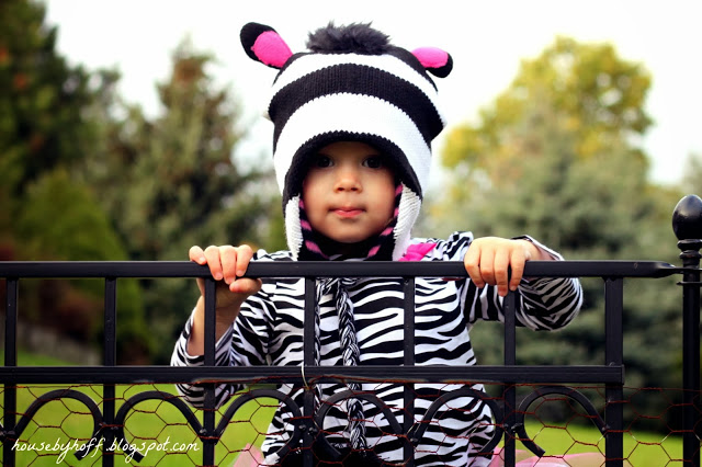 Girl holding onto a wrought iron fence in her Halloween costume.
