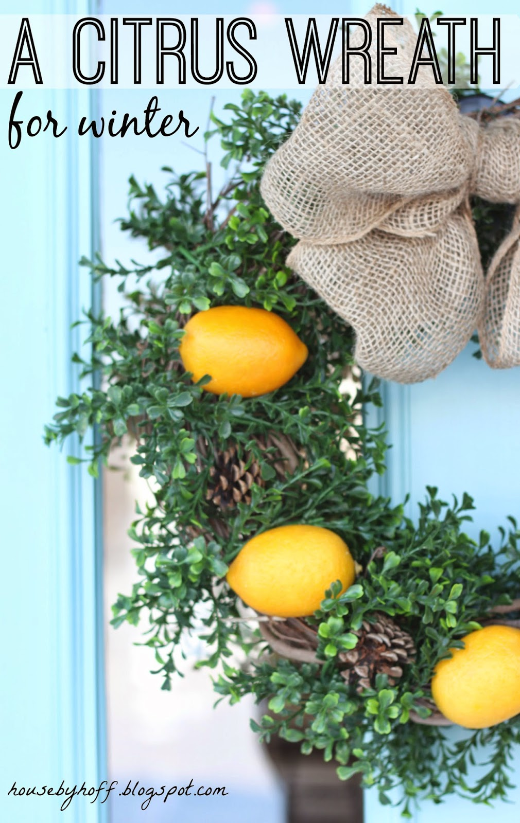 A citrus wreath for winter poster.