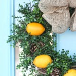 A Citrus Wreath for Winter