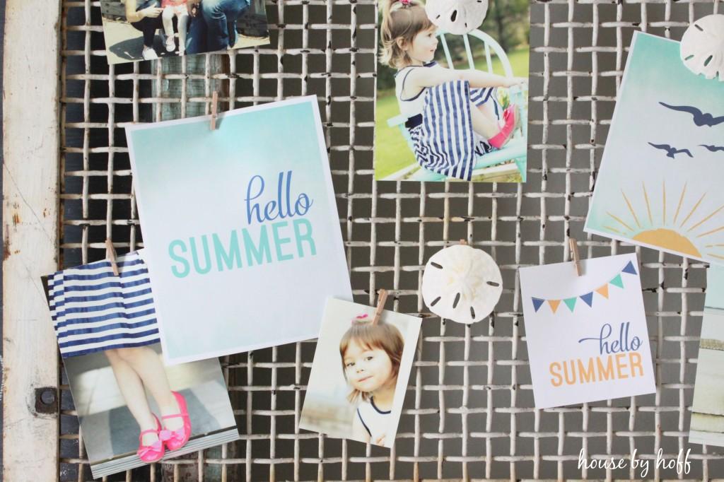 summer photo display 4