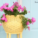Spray Painted Summer Planter