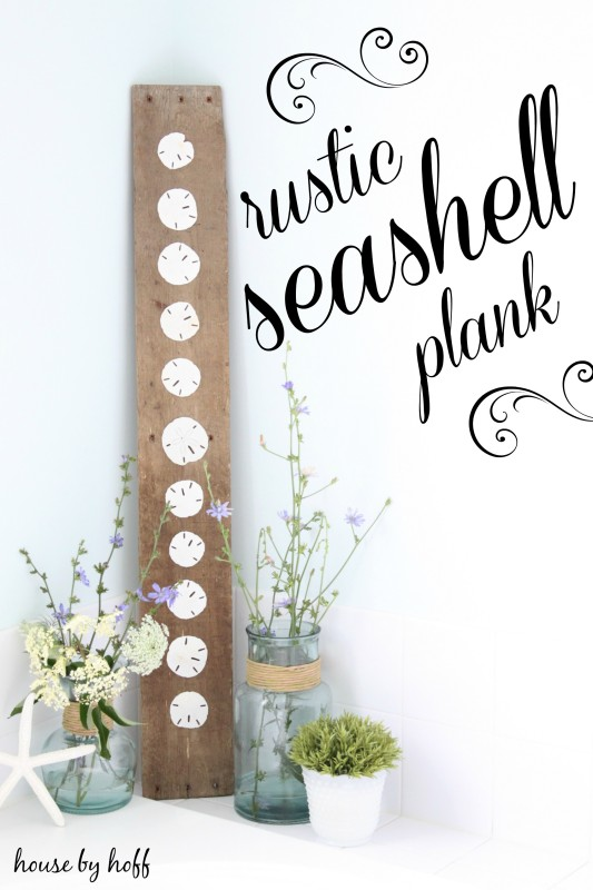 Rustic seashells on a plank.