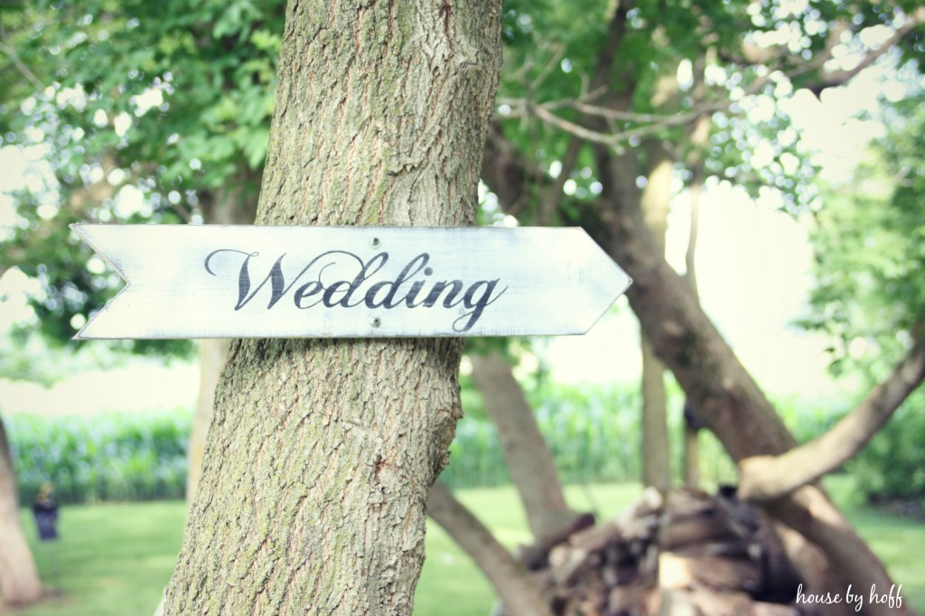 Picture of a wedding sign on a tree.
