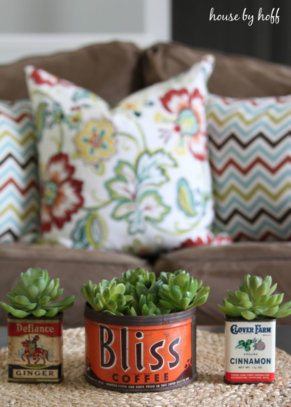 Vintage containers with succulents in them.