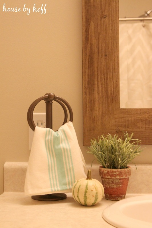 Brass towel holder, mini with pumpkin and a plant in bathroom.