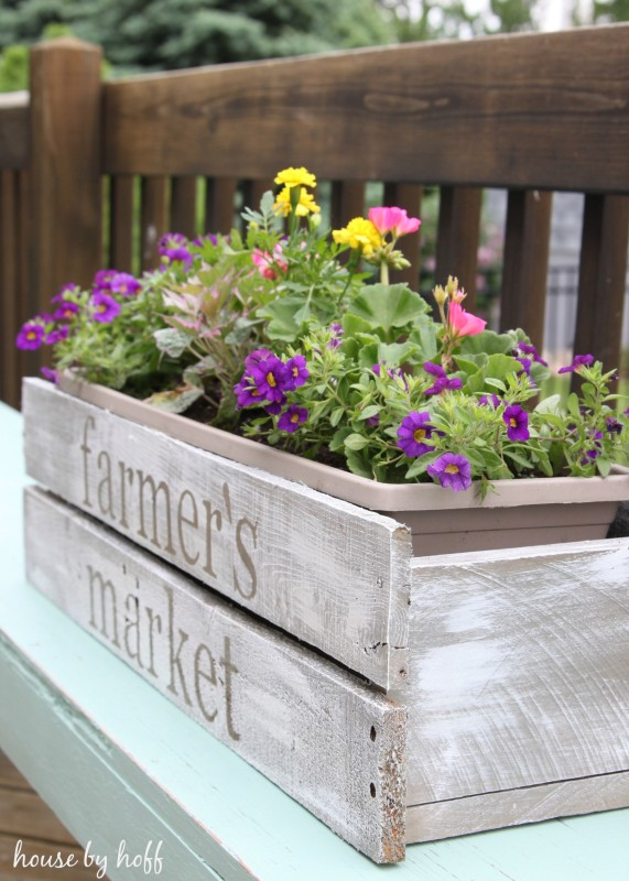 The planter box with purple and yellow flowers in it.