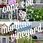 Cape Cod & Martha's Vineyard Trip
