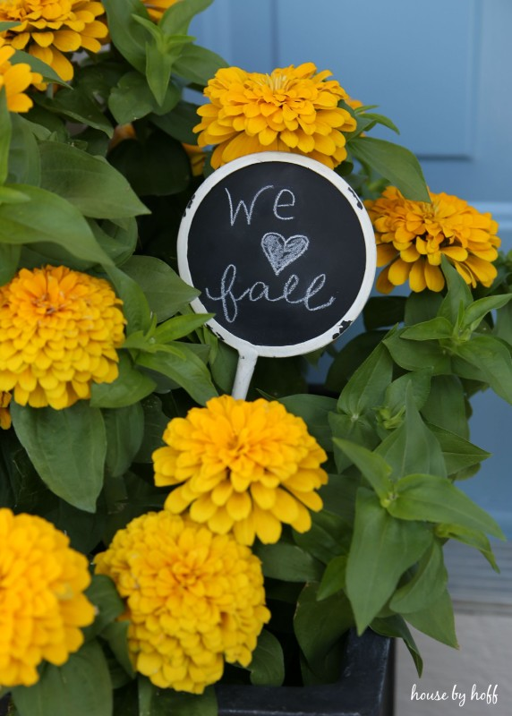 We love fall chalkboard sign in the yellow flower planters.