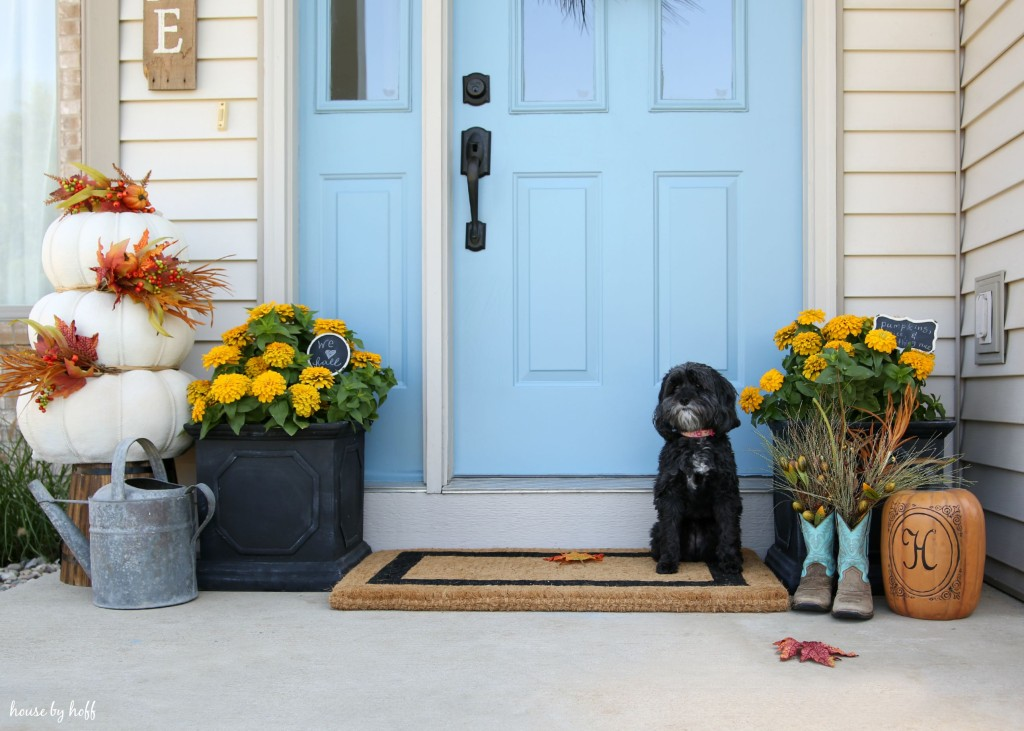 Fall Front Stoop with little dog, pumpkin, and boots.