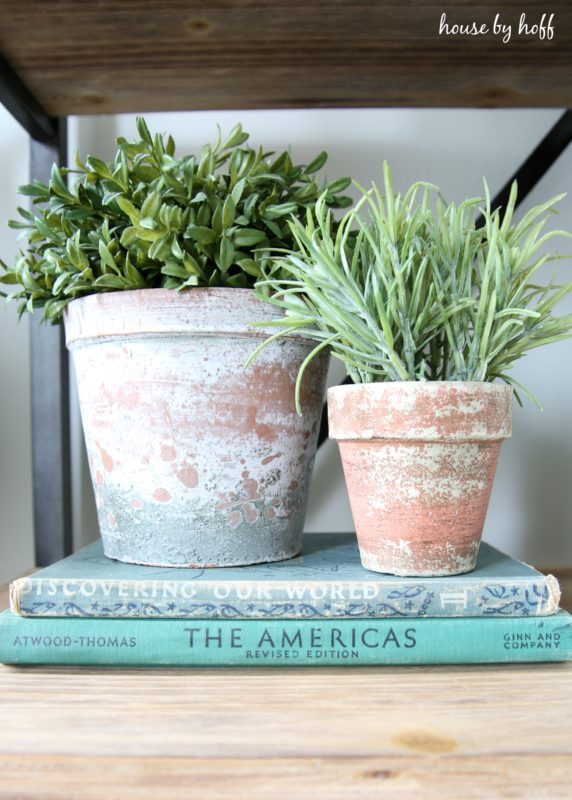 Pots of plants sitting on blue vintage books.