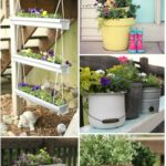 5 Planter Ideas for Summer