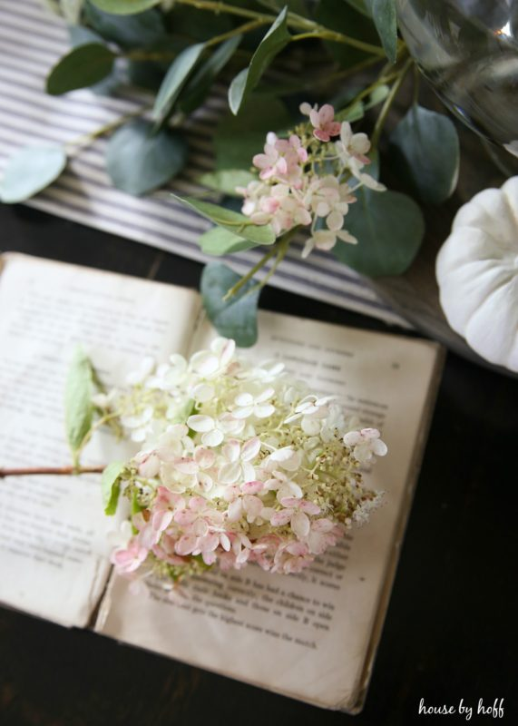 Pretty white flower stem lying on vintage book.