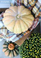 Fall Porch Blog Hop