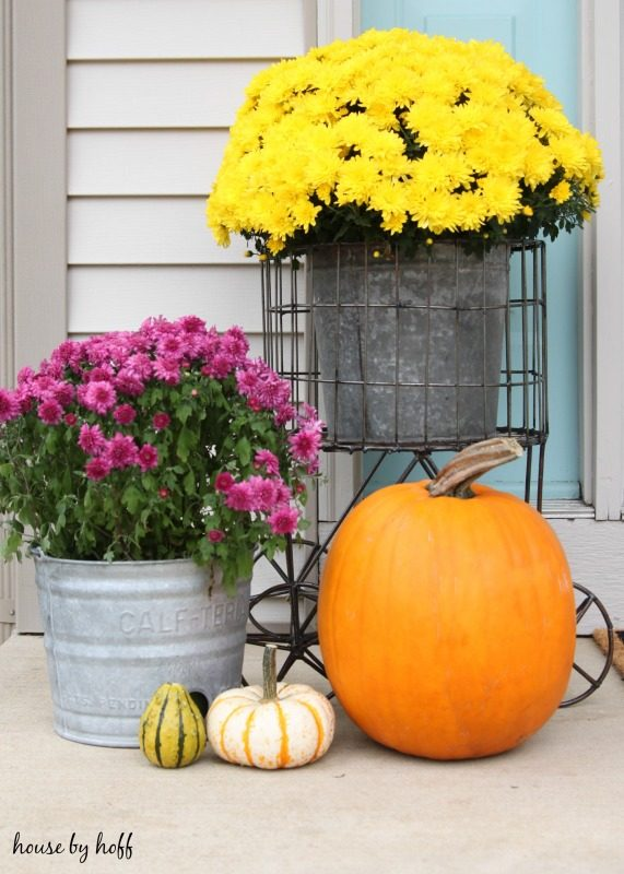 Yellow and pink flowers in containers and also a pumpkin on porch.