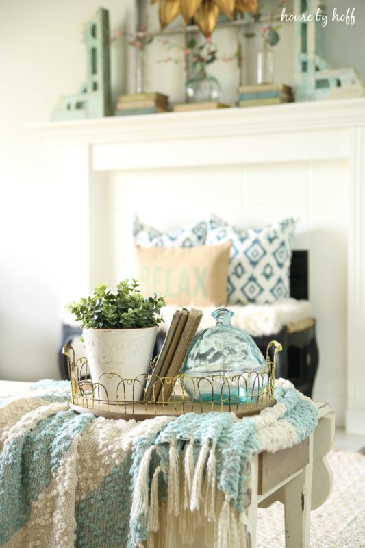 A blanket on a table in the living room and a tray filled with a plant and clear vase plus some books.