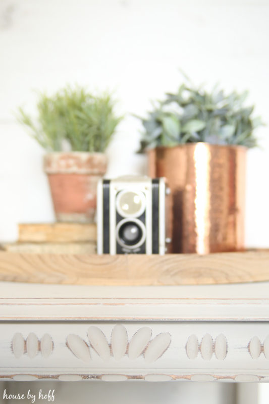 Succulents and vintage camera on top of table.