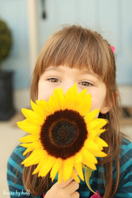 Large sunflower in front of little girls face.