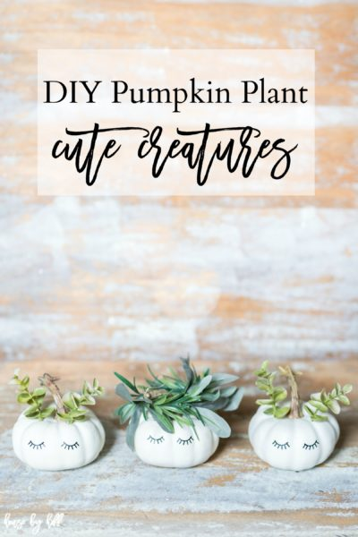 DIY Pumpkin Plant Cute Creatures