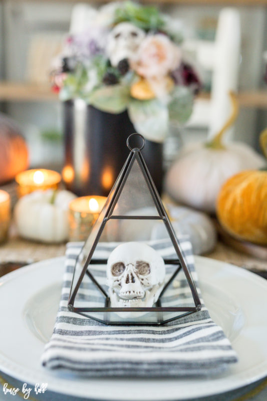 Terrariums with skull head inside.