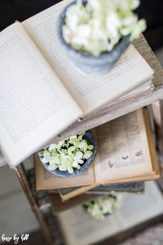 Opened antique books on side table with potted plants on them.