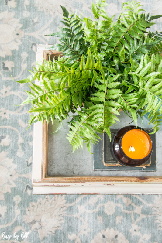 A green fern in a pot is on the coffee table beside the candle.