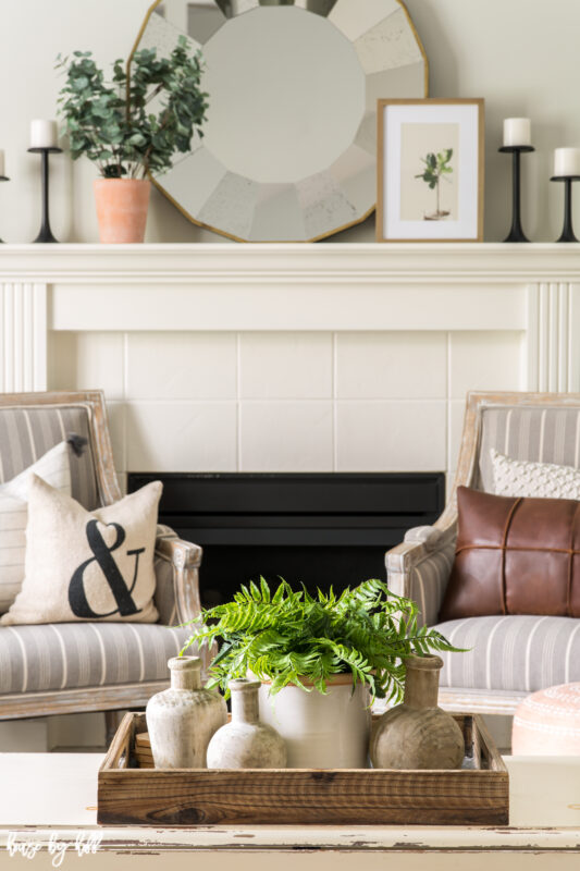 Coffee Table Vignette with Boston Fern and Wood Vases