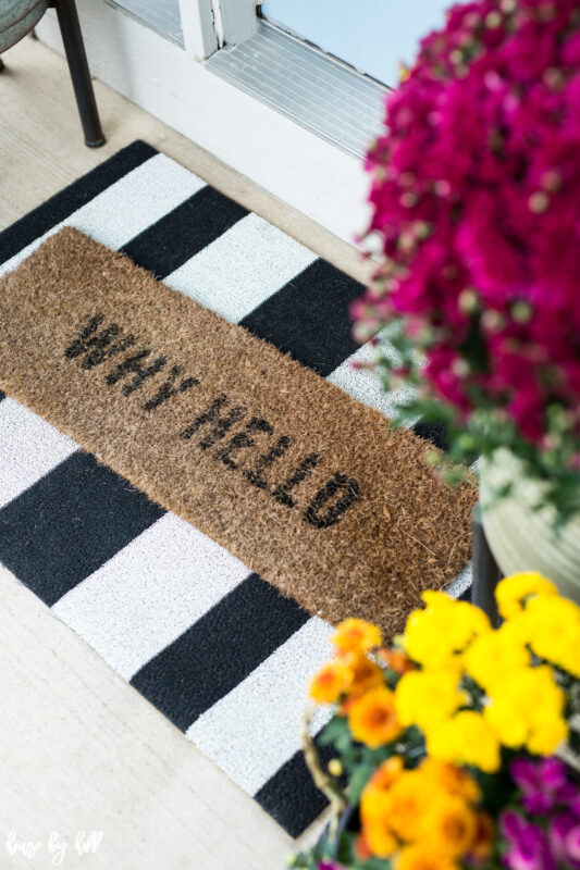 Layered Front Door Mats that say why hello!
