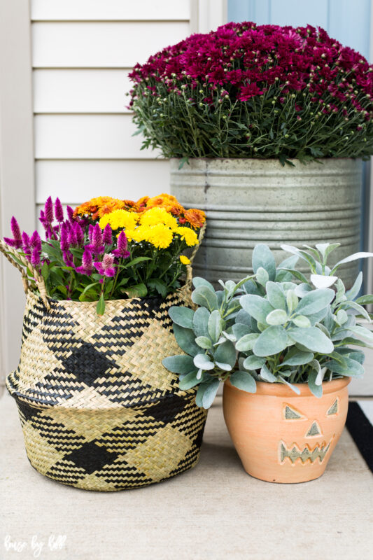 Fall Flowers and Plants in Seagrass Basket and Galvanized Planter on a Fall Front Stoop