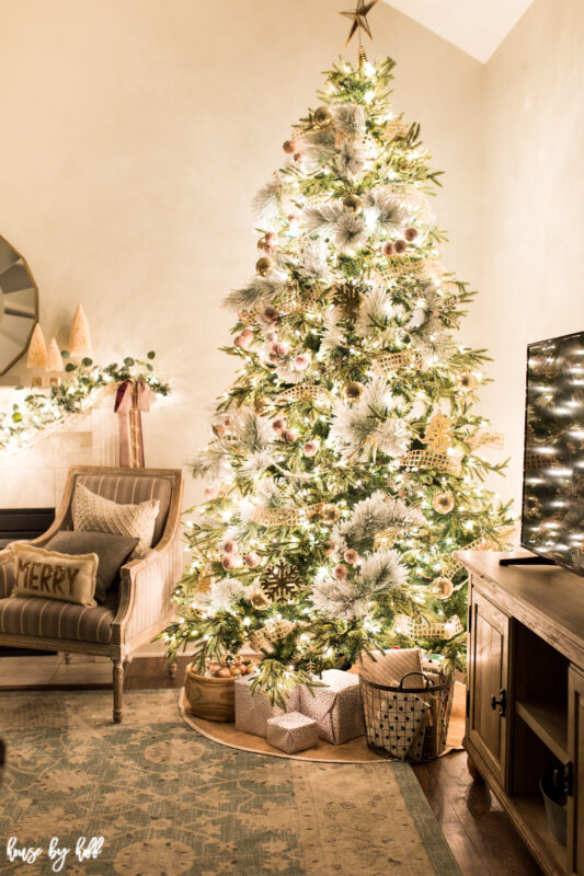 Presents are under the Christmas tree.