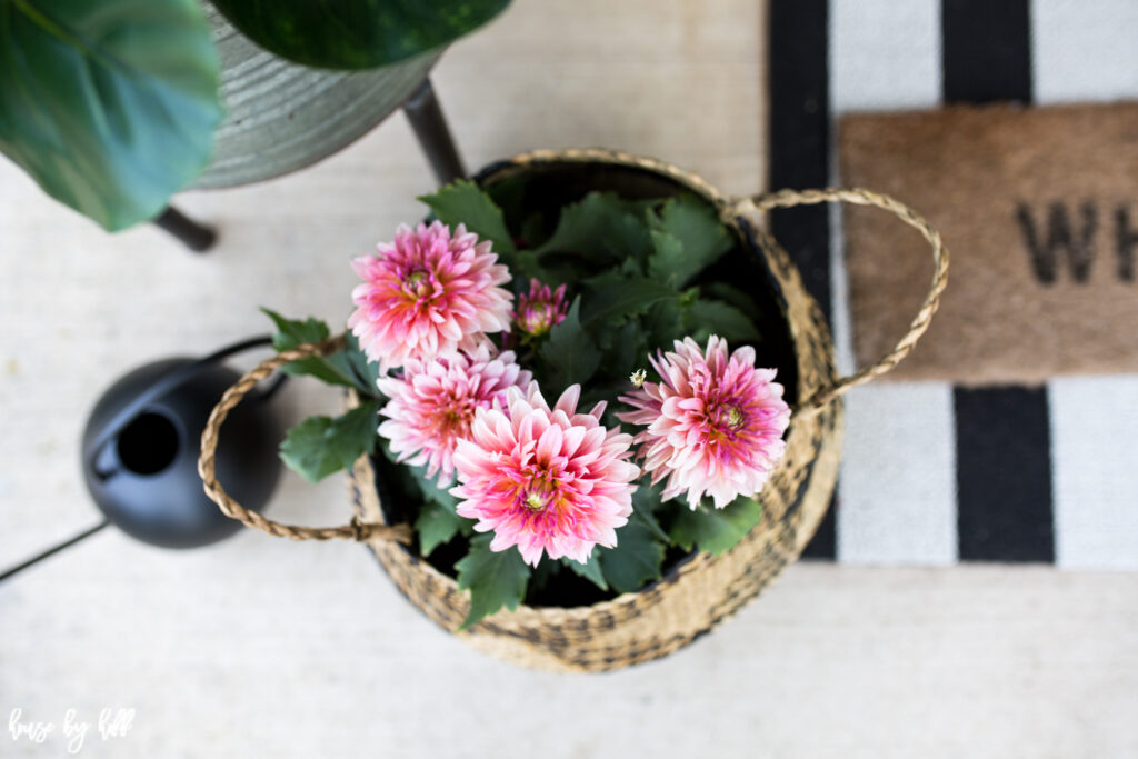 Pink Flowers in Basket with Striped Front Door Rug