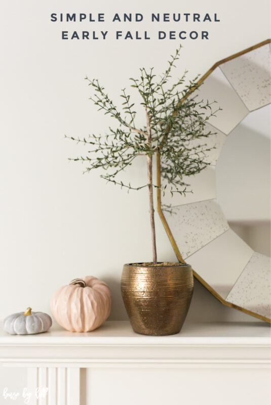 Simple and Neutral Fall Decor